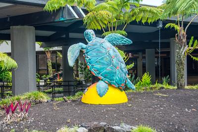 Hawaii 2015 - Ginger's Photos