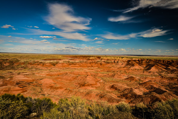 Painted_Desert & Petrified_Forest