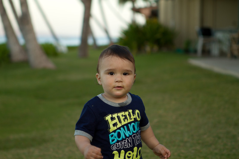 Hawaii2012-1778.jpg