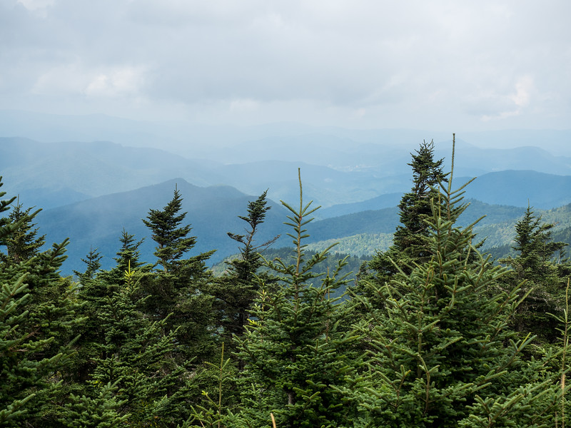 Blue Ridge Mountains from Mount Mitchell