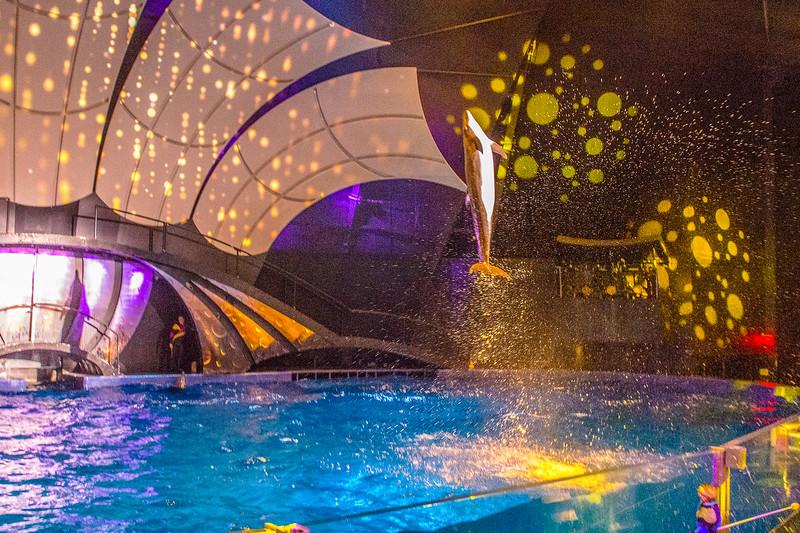 GA Aquarium with Linc, Ali & Abe-110.jpg
