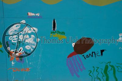 Hawai'ian Street Art
