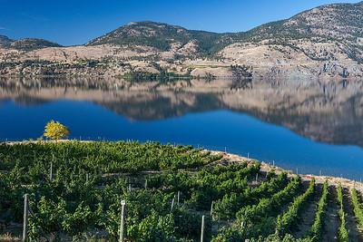 God's Mountain Estate, Okanagan Valley BC  09.27.17