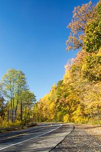 Autumn Walk in Harriman