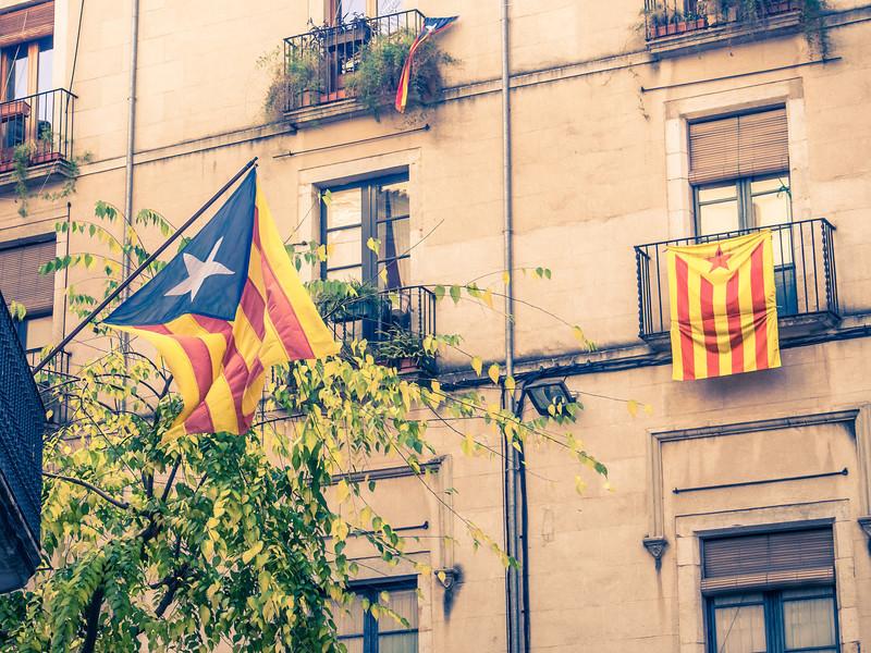 catalan flag.jpg