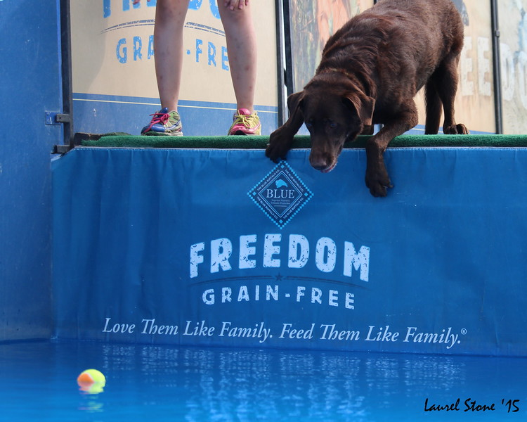 2015.8.21 Dock Dogs Lambeau-053.JPG