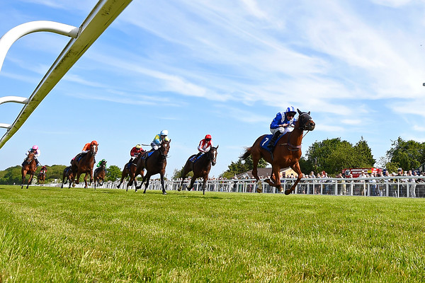 Afternoon Racing, Horse Racing, Salisbury Racecourse, Wiltshire,