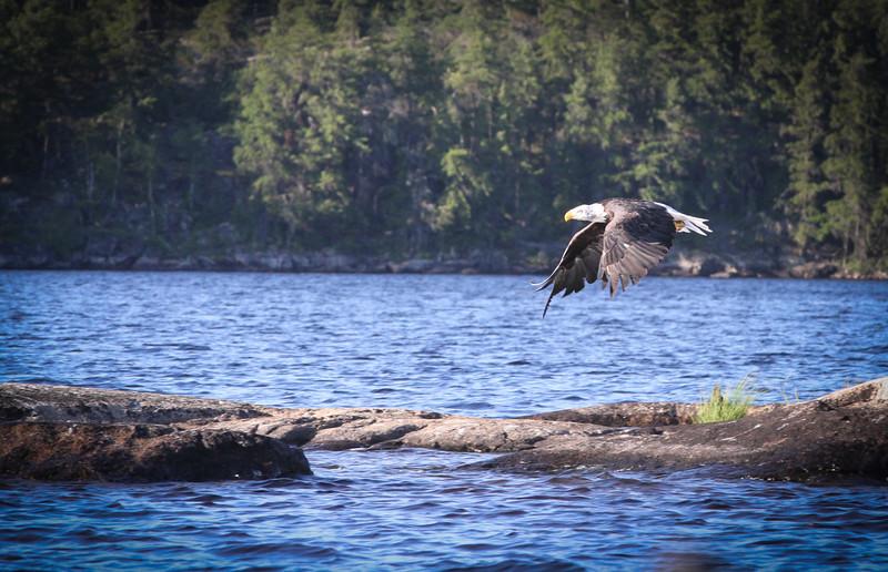 Canada-133.jpg