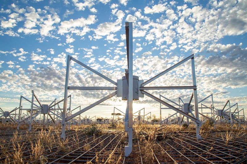 Bowtie antennas of the Engineering Development Array (EDA). Credit: ICRAR/Curtin.
