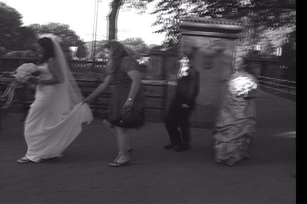Central Park Wedding Video