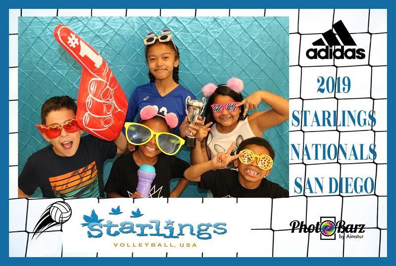 Starlings Volleyball (28).jpg
