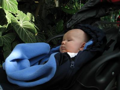 2008.03.30 - Family as Como Zoo
