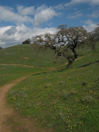 Pacheco State Park