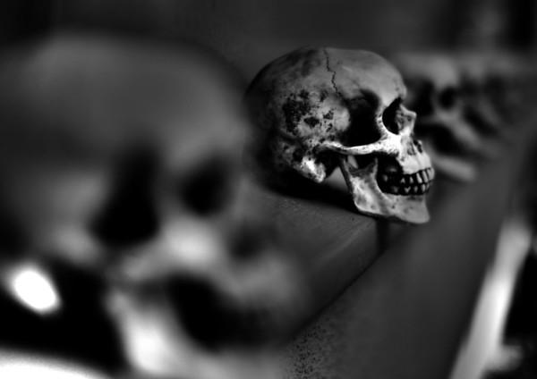 skulls (2).jpg