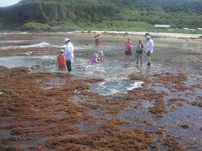 2011-05-21 Taga Chang Low Tide Reef Hike