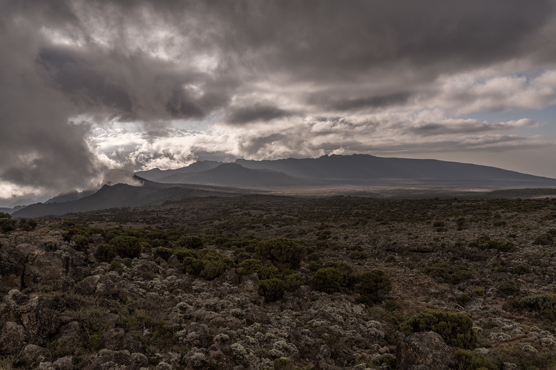 Kilimanjaro_Feb_2018-38.jpg