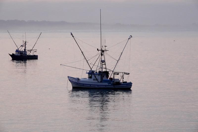 Morning boats docked in Santa Cruz