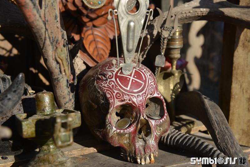 Symbiosis 2015 Joffrey.ca-23.jpg