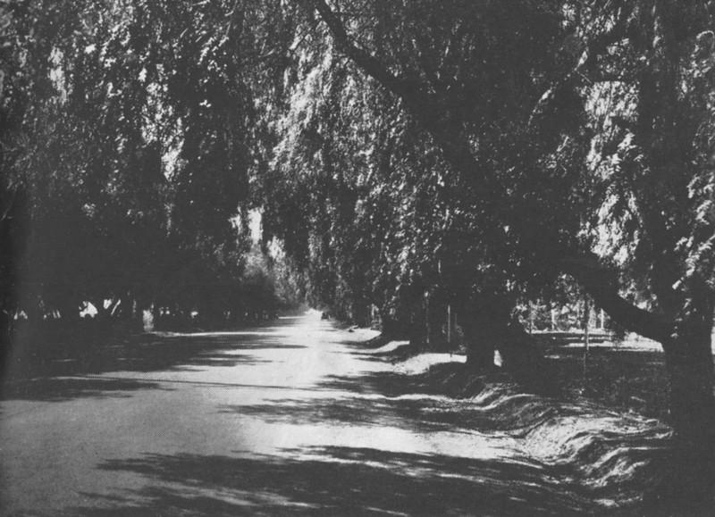 1961-03-04-CAHiPub-81a.jpg