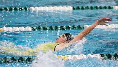 20171118 - State Swim (hrb)