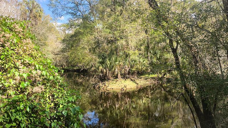 Bend in the Hillsborough River