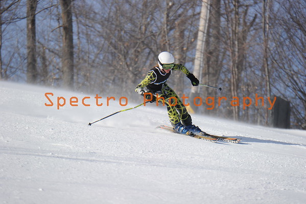 OFSAA Alpine 2015 Mens GS Level II