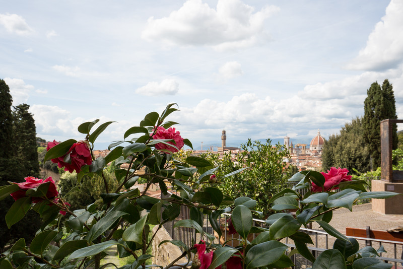Flowers and a view on the walk up to Piazzale Michelangelo.