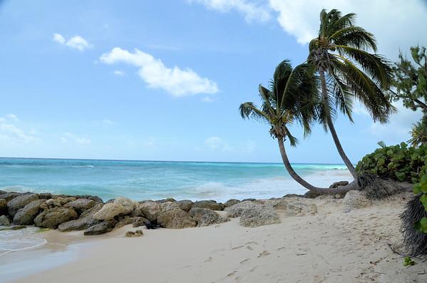 Sandals Resort Barbados ( January 2017)