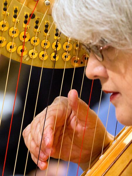 Harpist's hand