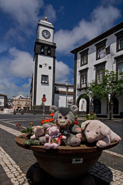 Gang in the Azores 3.jpg