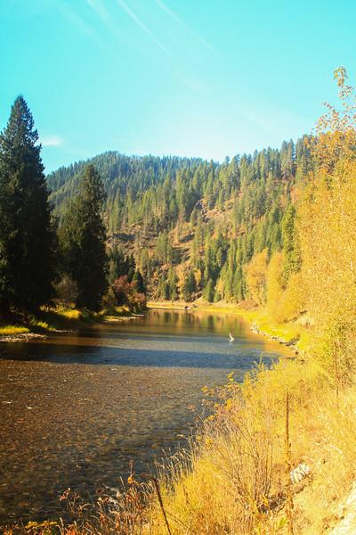 fall 2019 cda river-1586.jpg