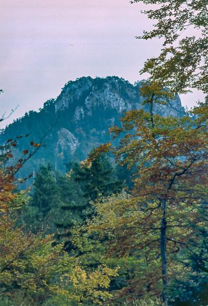 T11-Bavaria2-046.jpg