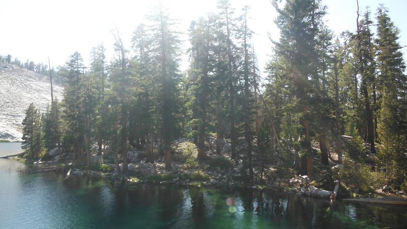 sequoia 106.JPG