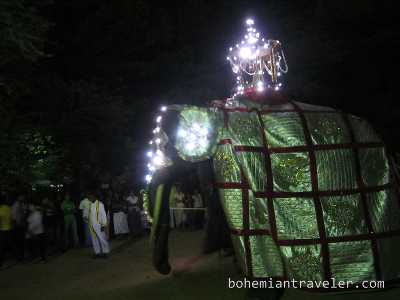Vesak parade Dambulla Sri Lanka (4).jpg