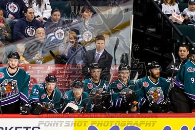 2016-02-13 Moose vs Wolves