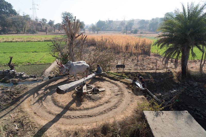 pkp - India - 31.jpg