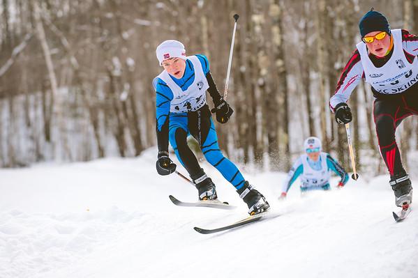 ski tigers JNQ Telemark 2016