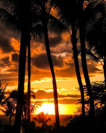 Hawaii ~ Maui