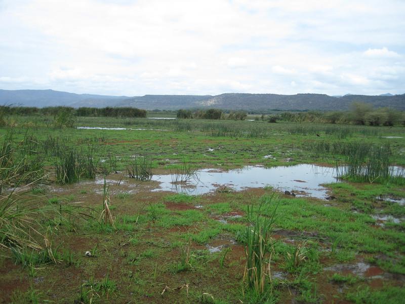 Tanzania14-3315.jpg