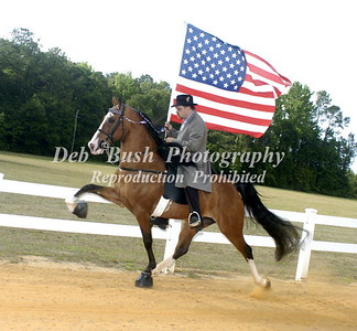 FLAG HORSE AND CANDIDS