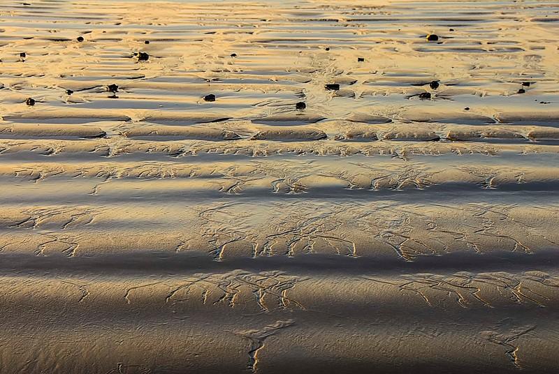 Beach_Santa Barbara-1.jpg