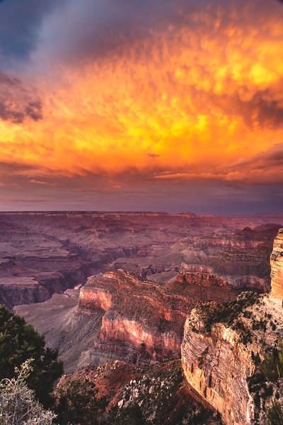 Grand Canyon-5136.jpg