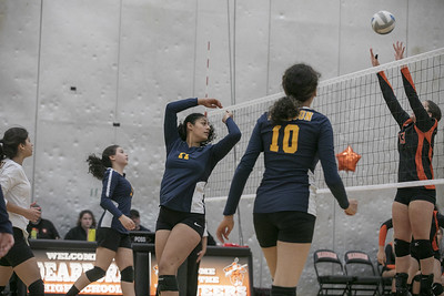 HS Sports - Fordson Dearborn Volleyball 19