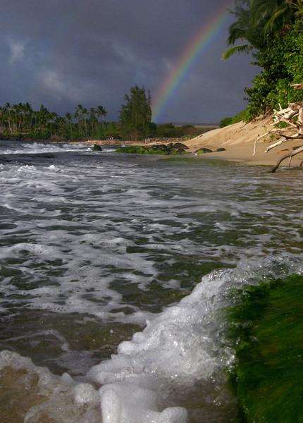Rainbow at Laniakea Beach North Shore of O'ahu, Hawai'i
