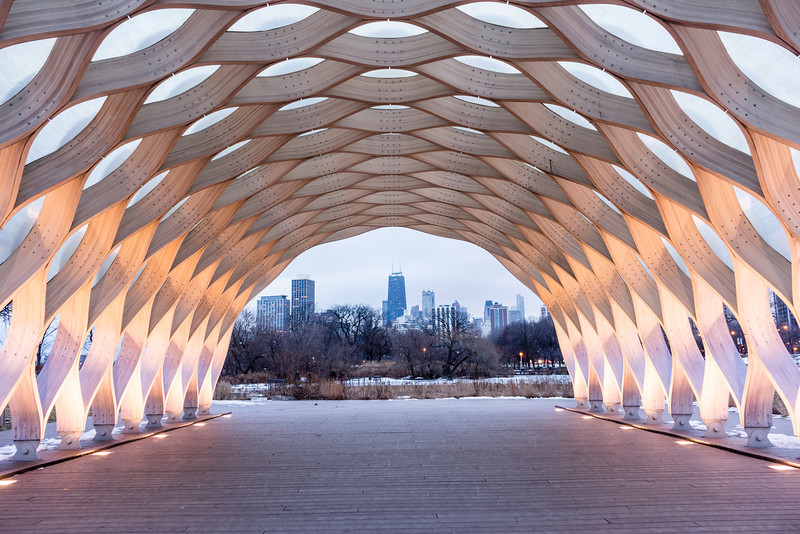 Peoples Gas Pavilion and the Chicago Skyline