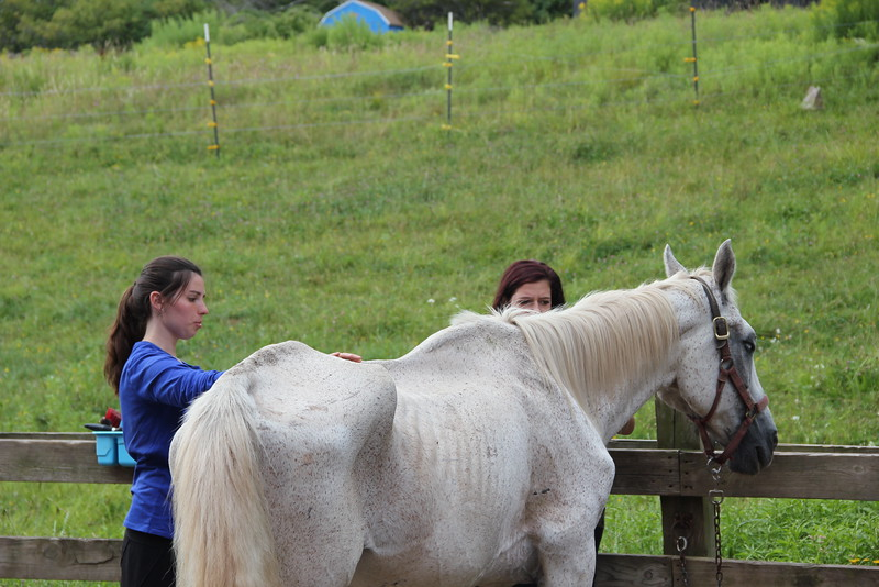 kars4kids_thezone_camp_girlsDivsion_activities_HorseBackRiding (25).JPG