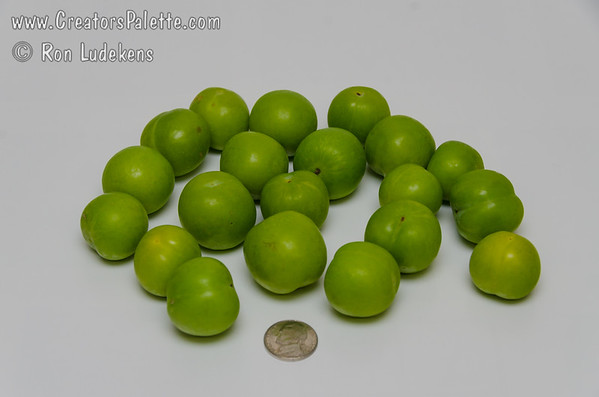 Persian Green Plum (Goje Sabz)