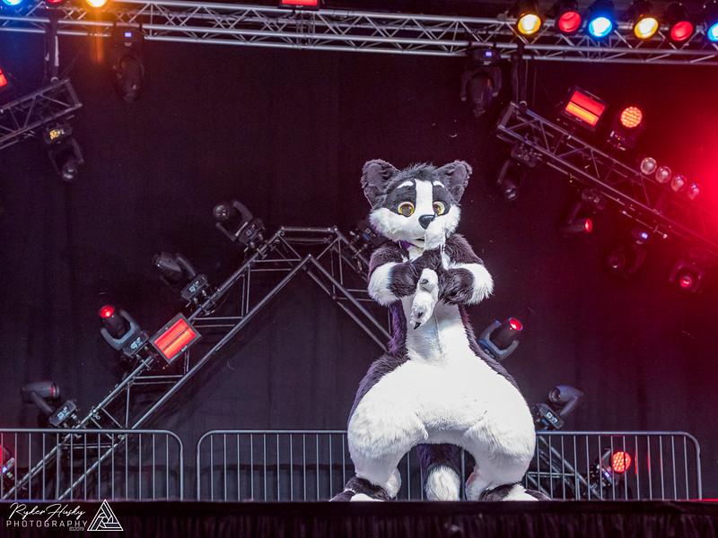MFF 2018 Dance Comp-1168.jpg