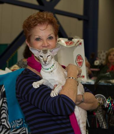 Cat Show Houston 2013