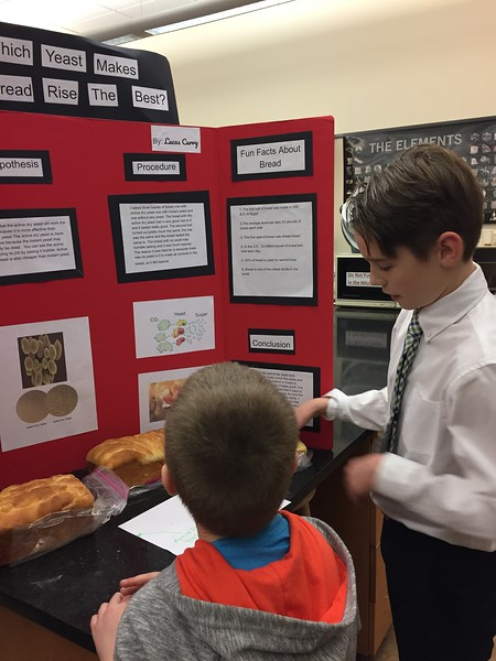 ES/MS School Science Fair